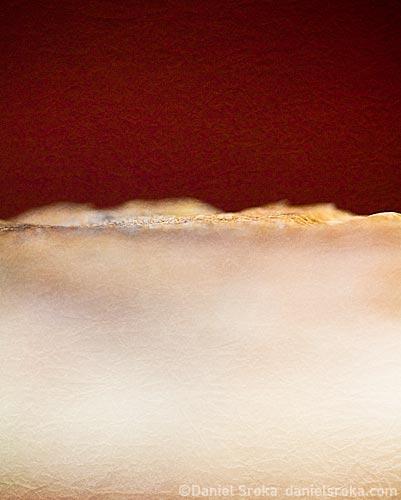Horizon ©Daniel Sroka