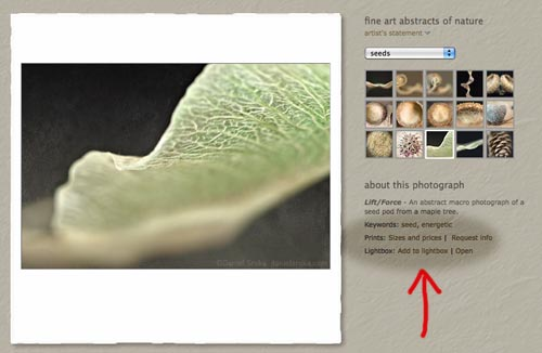 The new keyword and lightbox features can be found under the description of every photograph.