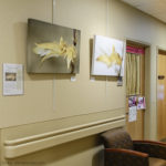 Solo show at the Simon Cancer Center