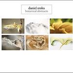 Daniel Sroka booth 1011 Artexpo New York