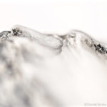The White Mountains - an abstract of a sea shell
