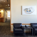 Offering (abstract of a shell) by Daniel Sroka at The Admirals Clubs' Premium Lounge at Miami International Airport