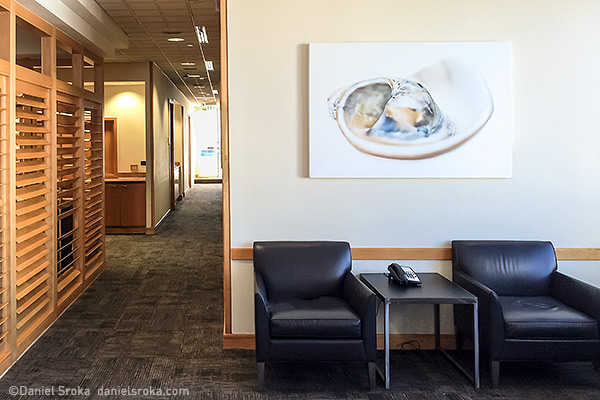 Daniel Sroka's abstract photography at the Admirals Clubs' Premium Lounge at Miami International Airport.