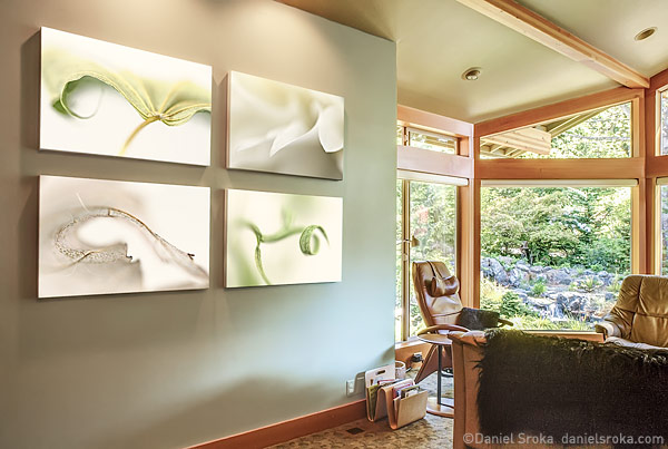 Daniel Sroka's botanical abstract photography in a living room setting.