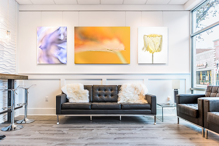 My art brings a vibrancy to the Urban Renew spa in New Jersey.