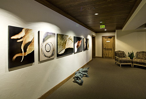 my artwork at the miraval resort daniel sroka fine art blog