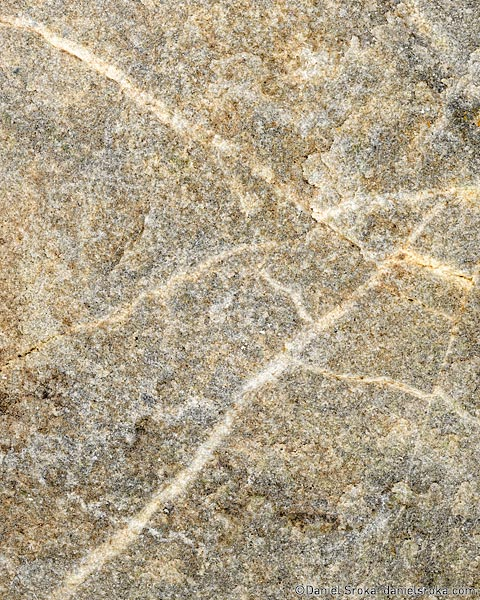 A photograph of the texture of a small stone. Fine art nature photograph by Daniel Sroka.